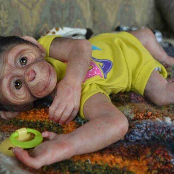 "Caesar: 22"" Real Lifelike Reborn Ape Toddler Doll - Kiss Reborn"